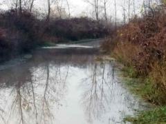 Drina se izlila u nebranjenim delovima u Crnoj Bari i Badovincima