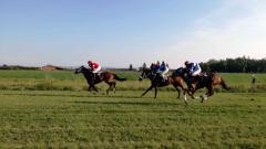 Treći trkački dan u Bogatiću - nedelja 26. avgust