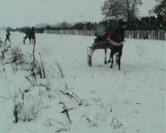 Božićne trke u Bogatić