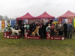 Srednjeazijski ovčar - najlepši pas V Međunarodne izložbe CACIB Bogatić