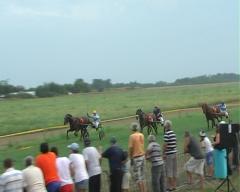 Treći trkački dan u Bogatiću - nedelja 7. avgust