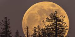 Спектакуларни супер-Месец на небу