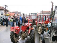 Пољопривредници траже продужење царинске заштите за млеко - Foto: Arhiva