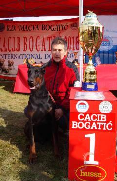 Doberman najlepši pas VII Međunarodne izložbe CACIB Bogatić 2018