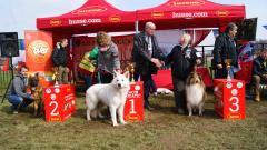 Prva FCI  grupa - Ovčarski psi terači stoke