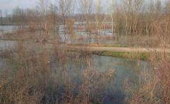 Drina u opadanju Sava stagnira