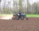 Setva kukuruza u punom jeku